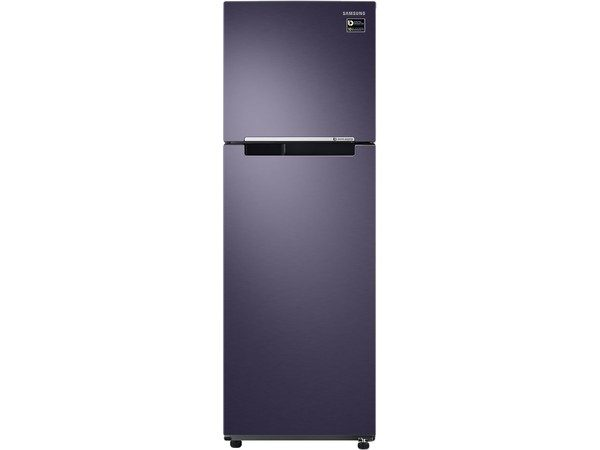 Tủ lạnh inverter Samsung RT25M4033UT/SV 256 lít