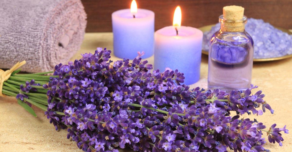 Tạo cảm giác thơm tho với các loại hoa