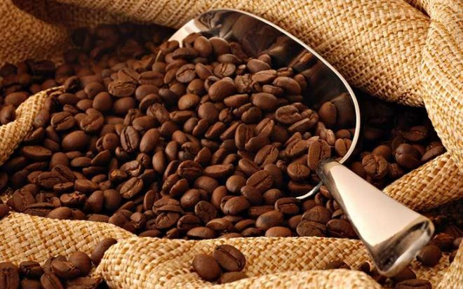 Không nên cho hạt cà phê vào máy sinh tố xay vì sợ hao mòn lưỡi dao