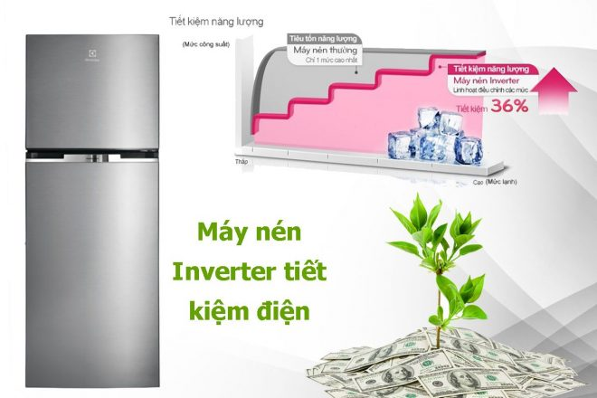 Tủ lạnh Electrolux có tốt không? 5 tủ lạnh Electrolux đáng mua nhất