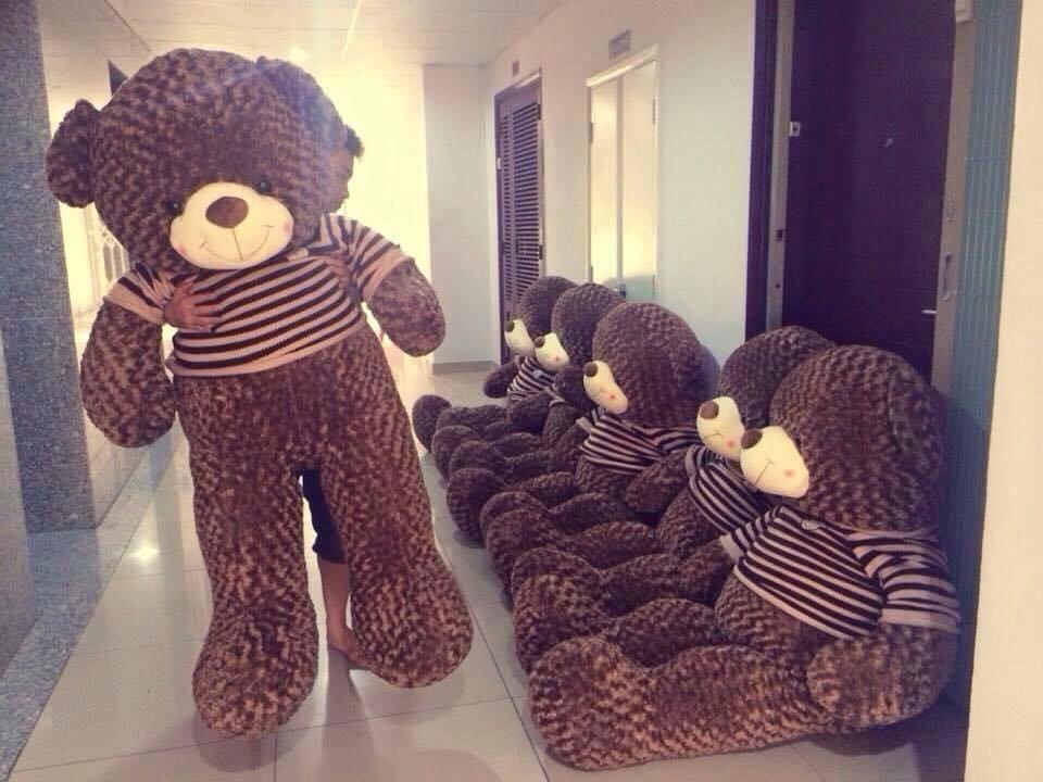 Lấy toàn bộ phần bông gòn bên trong gấu teddy to ra