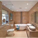 Làm sạch nhà tắm và nhà vệ sinh nhanh, an toàn