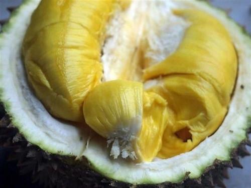 Cẩn trọng ăn sầu riêng sau khi uống rượu