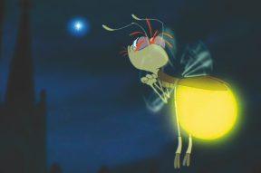 Đom đóm phát sáng để thu hút con khác giới