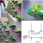 Cách làm chậu trồng hoa, trồng rau từ chai nhựa
