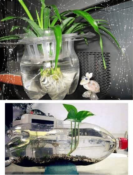 tận dụng chai nhựa