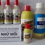 7 thuốc diệt mối mọt tận gốc, 100% hiệu quả không độc hại, cho ngoài nhà và đồ gỗ trong nhà