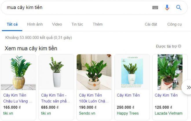 Gia Cay Kim Tien