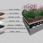 Tổng hợp kinh nghiệm trồng cây cảnh, cây hoa, cây rau trên sân thượng