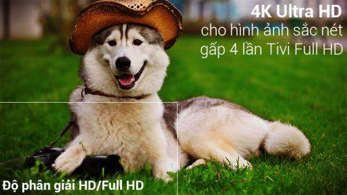 Smart Tivi LG 43 inch 43UK6340PTF 06