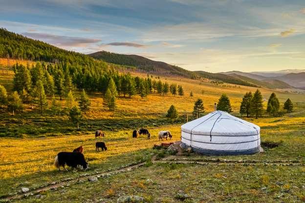 Vị trí 42. Mông Cổ