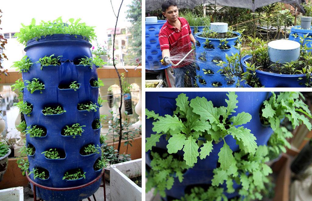 4 mô hình trồng rau thông minh tại nhà
