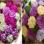 hoa tet 1