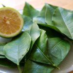 Hạt chanh, lá chanh – vị thuốc thần kỳ chữa bệnh hiệu quả