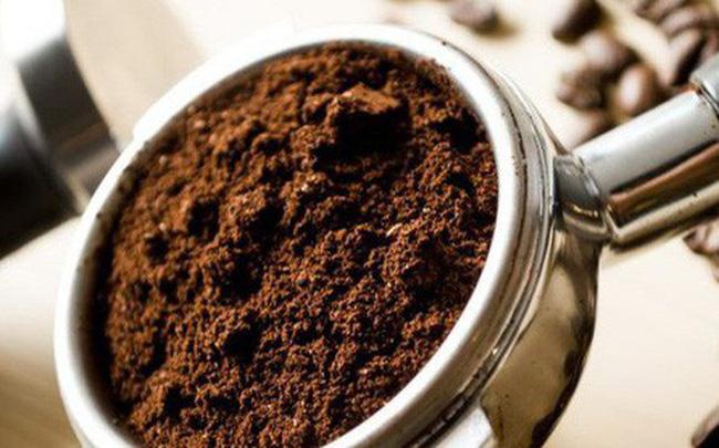 Tận dụng bã cà phê đuổi kiến