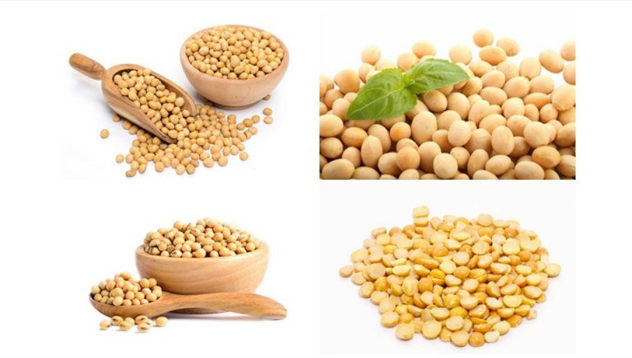 Đậu tương hay đậu nành được khuyên dùng để cải thiện sức khỏe và chất lượng tóc
