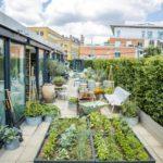 Biến hóa sân thượng thành vườn rau xanh sạch đẹp