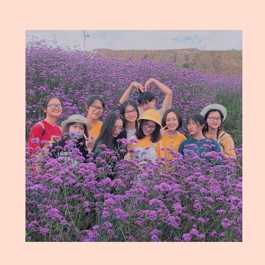 Đội của Linh Chi cũng yêu Nhật Anh lắm