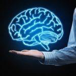 1 cách chăm bón cho bộ não cho mọi người
