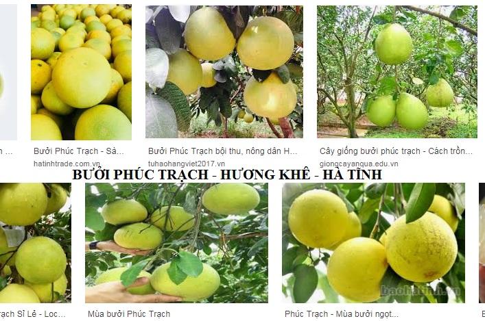 Buoi Phuc Trach Huong Khe Ha Tinh
