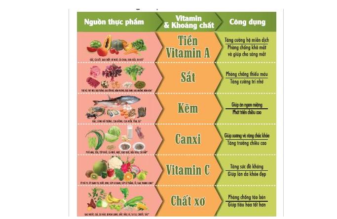 Các chất dinh dưỡng trong thực phẩm