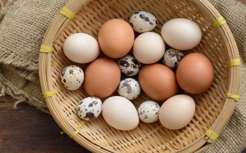 Trứng chứa nhiều vitamin và khoáng chất nuôi dưỡng tóc