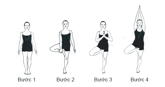 cac buoc tap tu the cay vrksasana tree pose