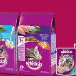[Review A-Z] Dòng sản phẩm thức ăn cho mèo Whiskas có tốt cho mèo cưng nhà bạn không?