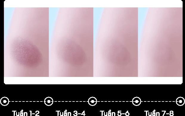 scar schedule 34 1