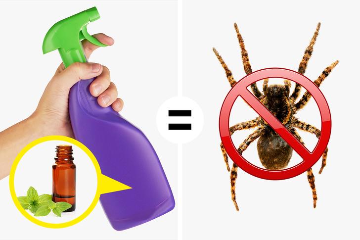 mẹo diệt côn trùng