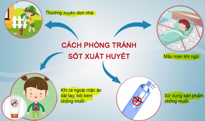 Các cách phòng tránh sốt xuất huyết hiệu quả