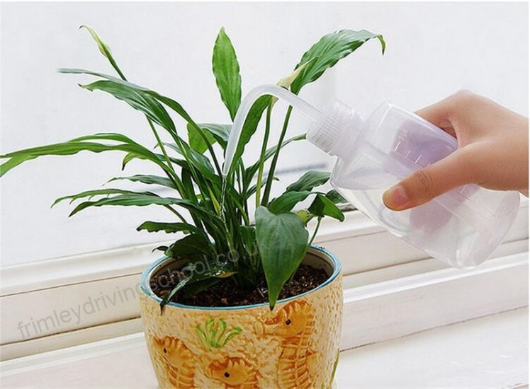 Gardening tools Water Spray Watering Can Garden Plants Flower Succulents Water Container Hand Pressure Flower Pot Spray Bottle ali 05972355 2 748x550
