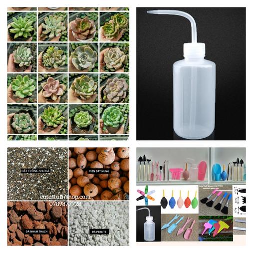 Sen đá và dụng cụ trồng cây (Copy) (2)