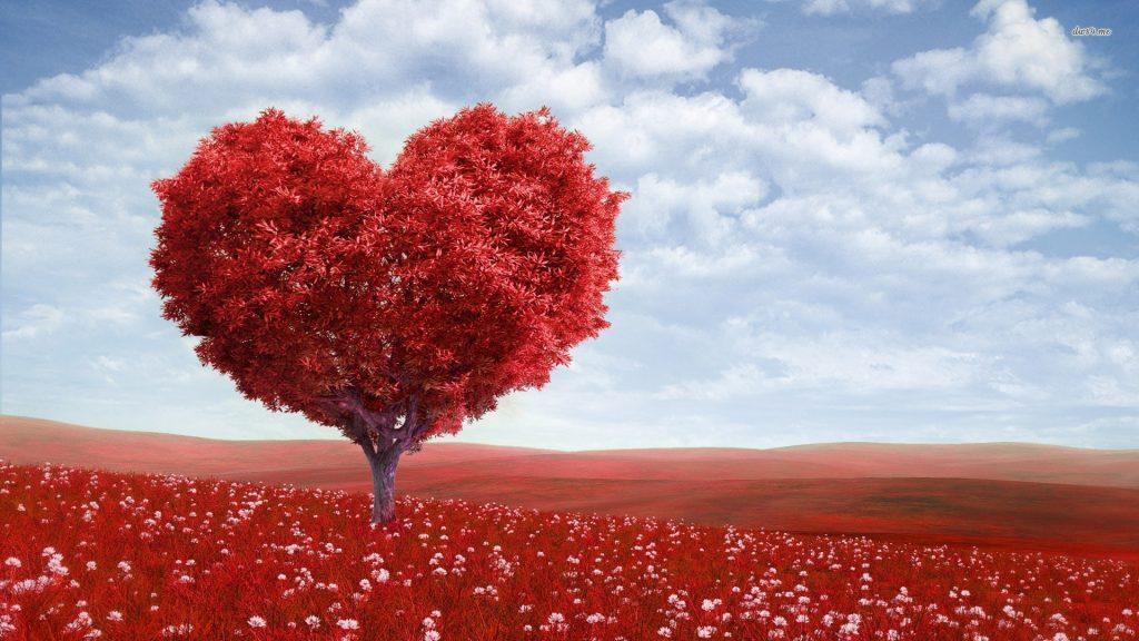 Tình yêu là trái tim luôn đập mạnh