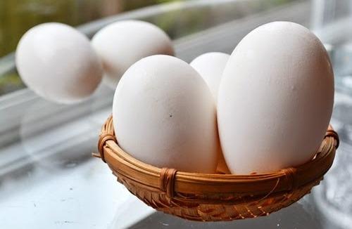 Dinh dưỡng của trứng ngỗng
