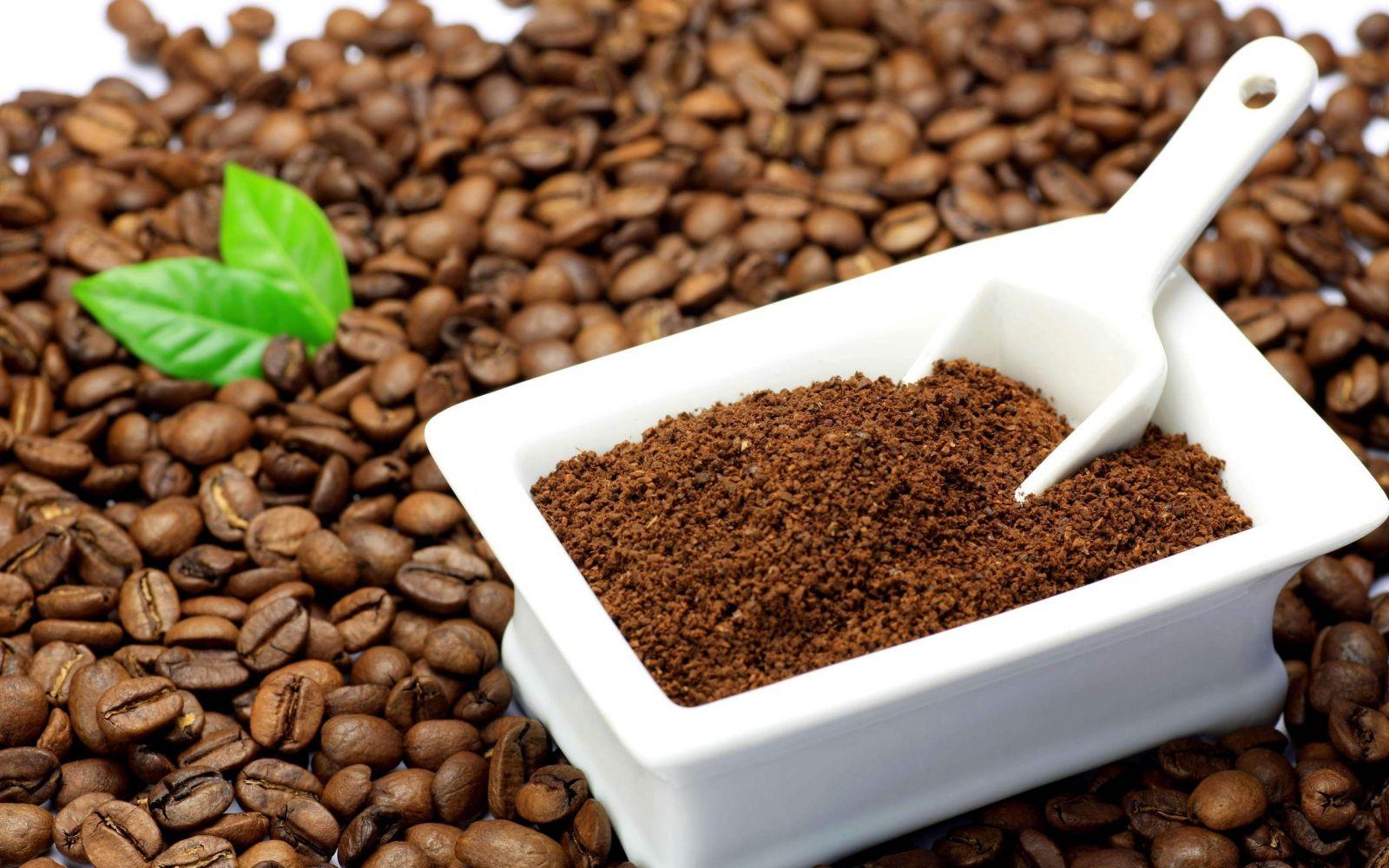 Bã cà phê diệt gián