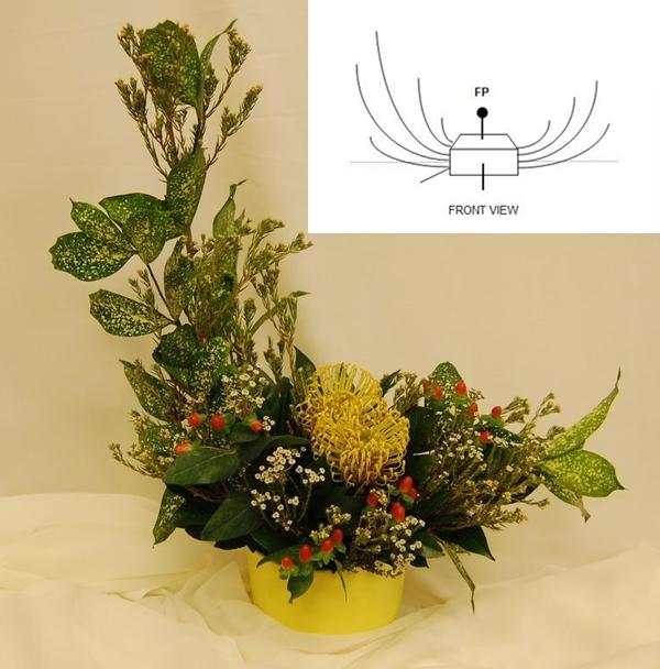 cam hoa theo hinh luoi liemban nguyet 214742