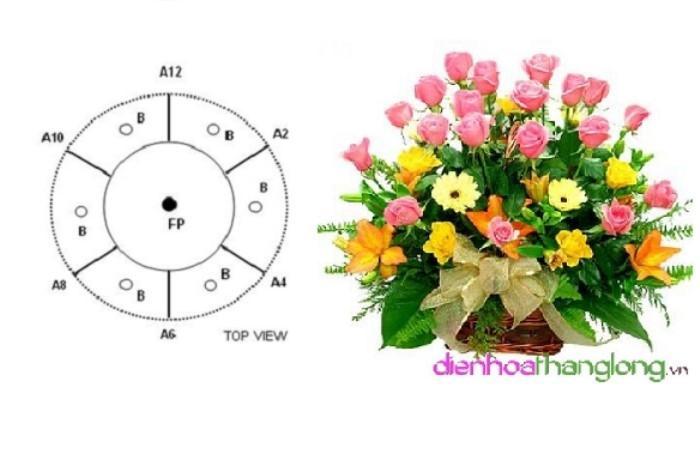 cam hoa theo hinh vom 205754