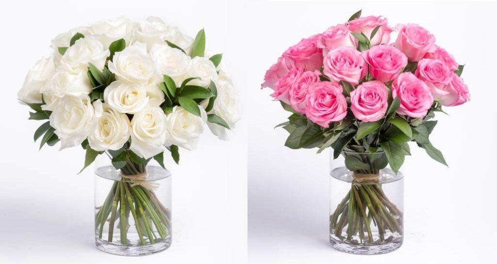 hoa hồng 1 mầu 1 don gian