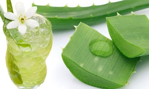lá dứa kết hợp với dầu chuối
