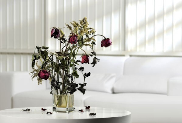 sai lam khi dat binh hoa trong phong khach khien hon nhan bat hoa suc khoe di xuong 1 1505557462 width600height406
