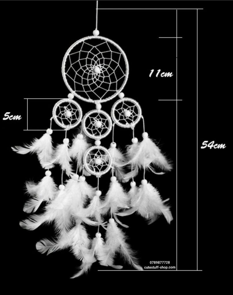 Lưới Bắt Giấc Mơ Lồng Tuyết