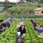 Nông nghiệp hữu cơ chi phí thấp JADAM với Người đàn ông dành cả đời để làm nông nghiệp hữu cơ