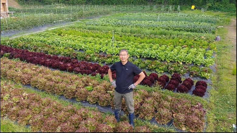 Nông nghiệp hữu cơ trang trại JADAM 6