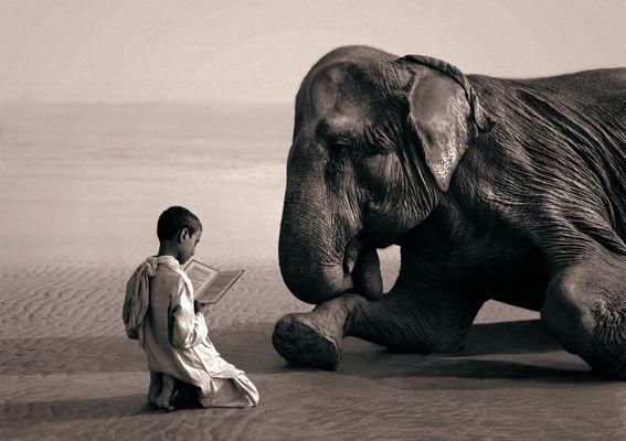 Sống khiêm nhường, khiêm tốn