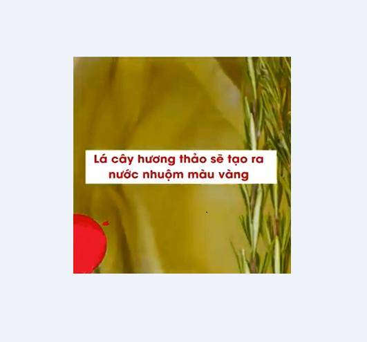 Lá cây hương thảo sẽ tạo ra nước nhuộm màu vàng