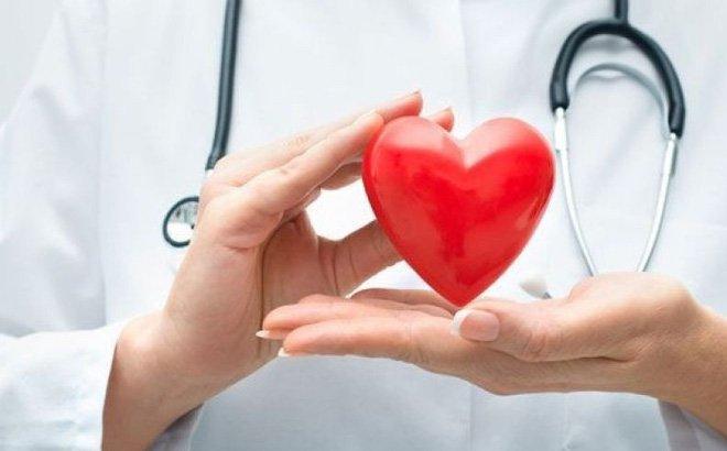 bác sĩ và trái tim