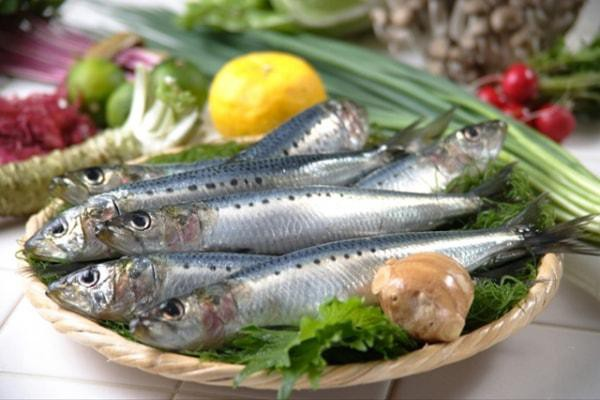 Cá tốt cho sức khỏe
