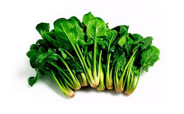 Rau bina hay còn gọi là rau chân vịt hay cải bó xôi