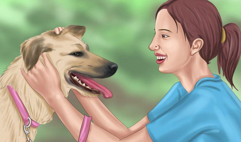 Thấu hiểu chú chó bị tăng động